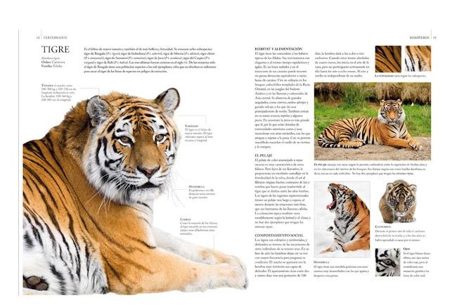 Guía Definitiva del Reino Animal 2