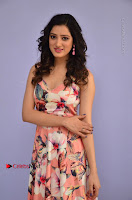 Actress Richa Panai Pos in Sleeveless Floral Long Dress at Rakshaka Batudu Movie Pre Release Function  0027.JPG