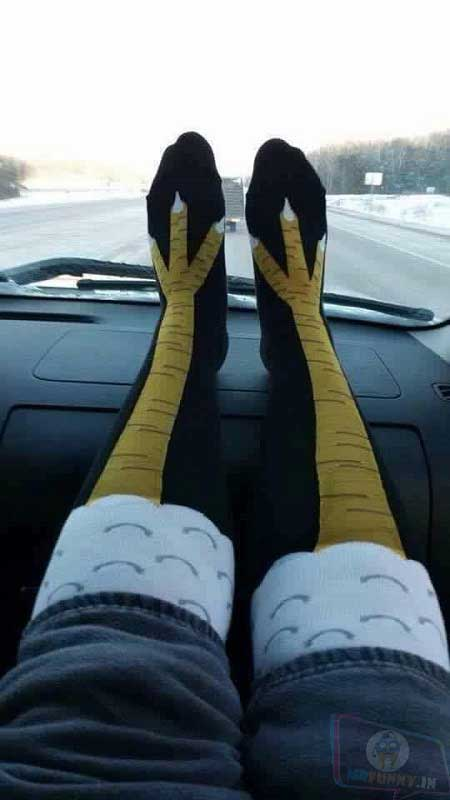 Fashion is my Passion!... Do you like my socks
