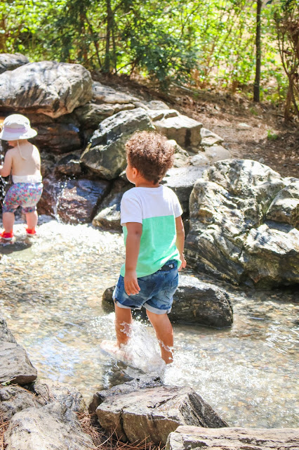 Little boy walking in a stream at the museum of life and science in durham