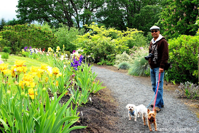 Dog Friendly Oregon Garden, Silverton, Oregon