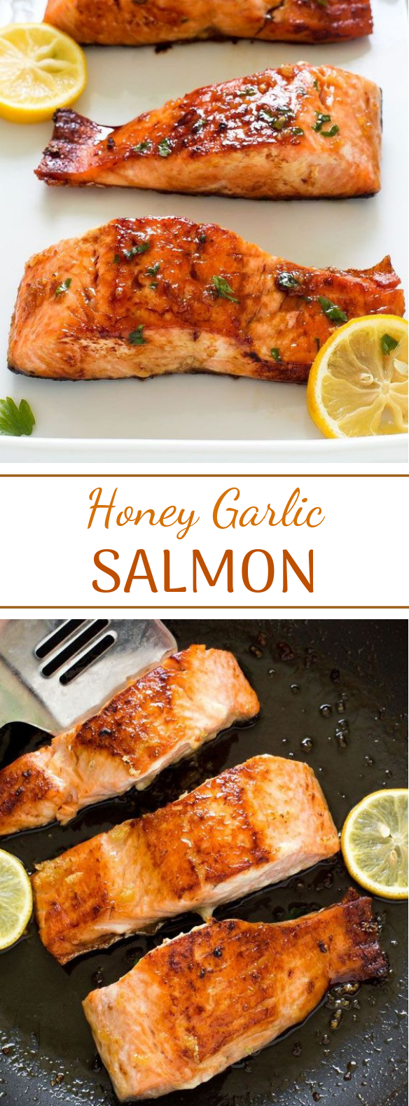 Honey Garlic Salmon #fish #familyrecipe