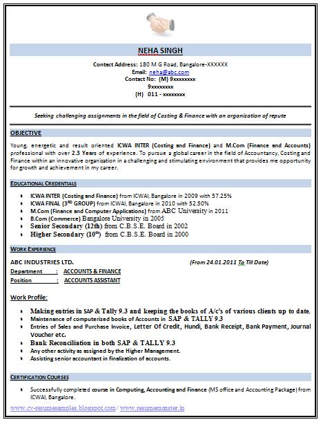 9 cv format samples pdf