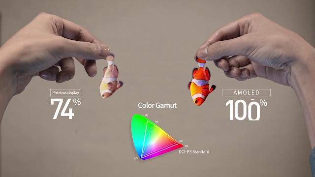 Perbedaan Antara OLED dan AMOLED