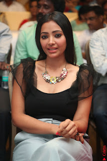 Swetha Basu in a Black Sleeveless Top Long Skirt at Mixture Potlam Movie Audio Launch 022.JPG
