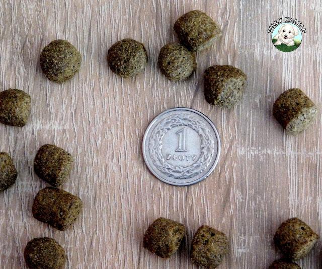 wielkość karmy greendog