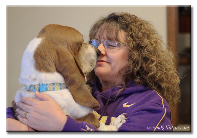 Bentley Basset Hound and me love each other unconditionally.