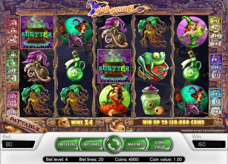 Wild Witches Video Slot Screen