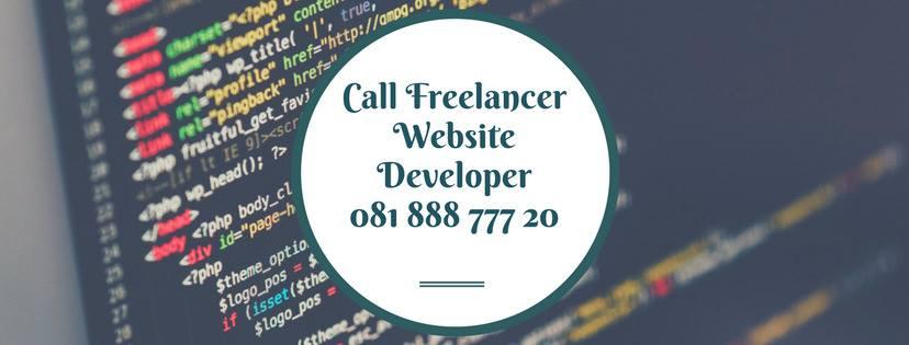 Freelancer Web Developer in Lucknow