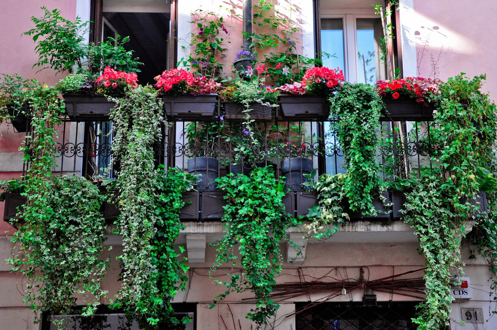 A hanging garden on a balcony in Vicenza, Italy