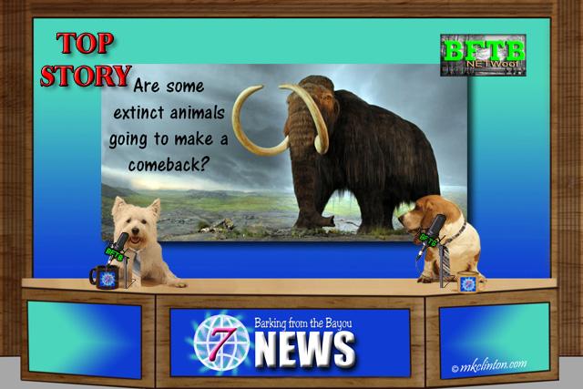 BFTB NETWoof News Top Story on extinct animals