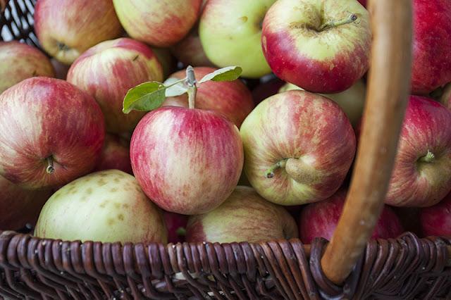 Torkade äppelringar