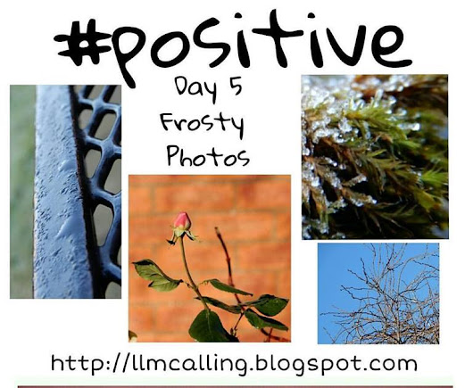 day 5 #positive #oneword365