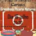 16-7-2016 Picaria Noturna na Praça de Toiros do Cartaxo
