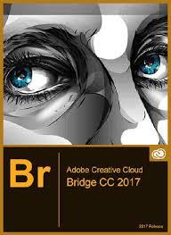 adobe bridge cc 2015 64 bit download