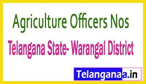 Agriculture Officers Mobile Nos List Telangana State Warangal District