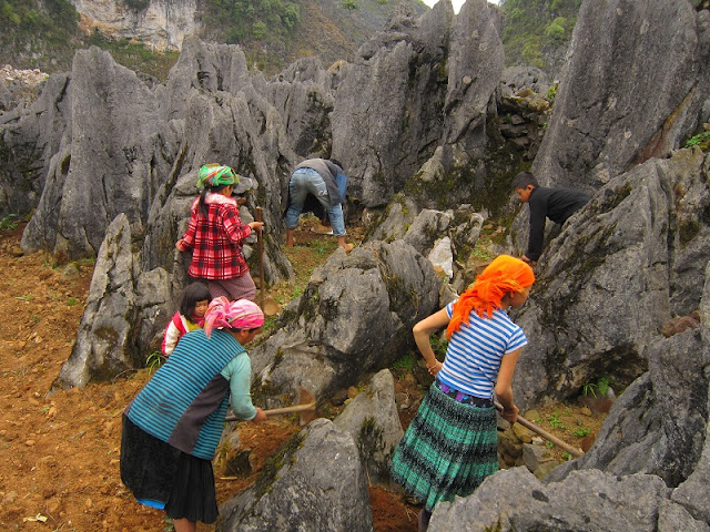 Coming to Ha Giang to visit Lo Lo tribe 2