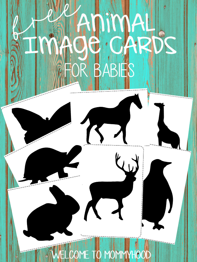 Montessori Activities For Babies Black And White Animal Cards