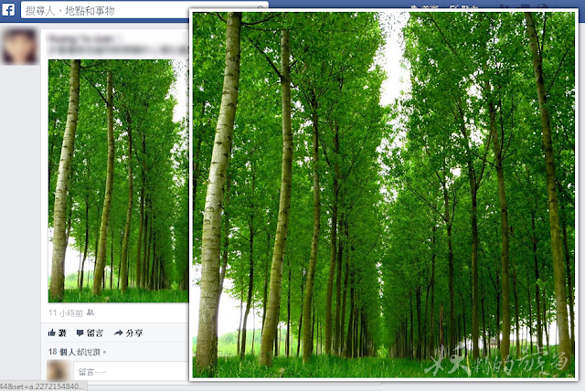 2 - Photo Zoom for Facebook - 自動放大FB上的相片!