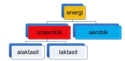 Energi Sistem Anaerobik