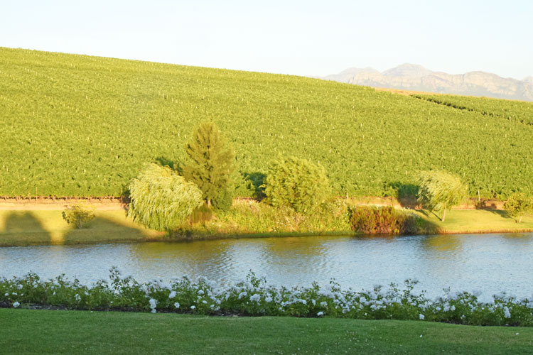 An Overnight Visit To Asara Wine Estate And Hotel