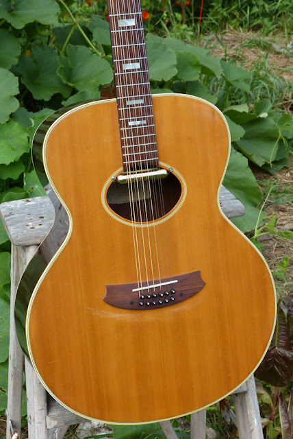 1970s japan made epiphone nova 245 12 string guitar. Black Bedroom Furniture Sets. Home Design Ideas