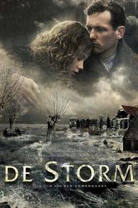 Poster The Storm