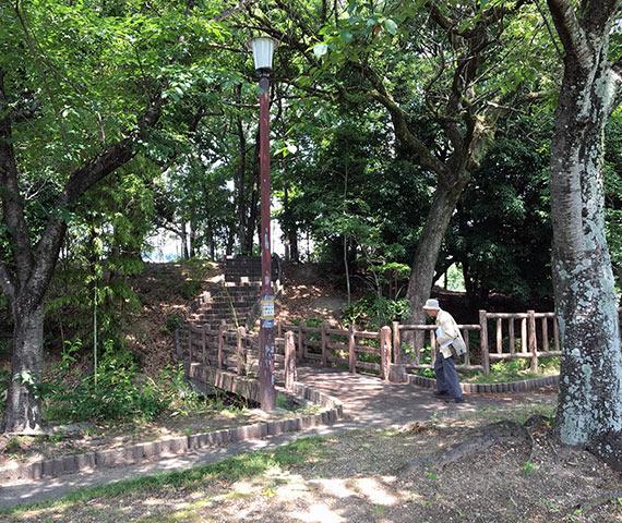 沓掛城本丸と諏訪曲輪を繋ぐ階梯(2017年6月10日撮影)