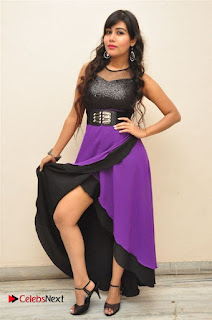 Telugu Actress Rachana Smith Stills at Money is Honey Audio Release  0098.jpg