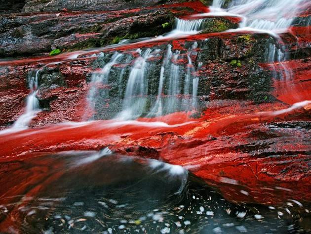 بحيرات واترتون الحديقة الوطنية في ألبرتا (كندا). الصورة من قبل Michael Melford