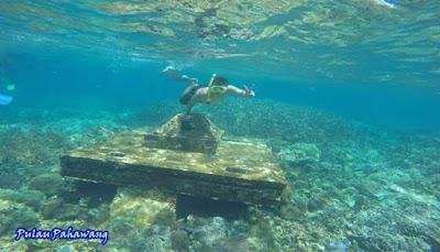 Taman Laut Pulau Pahawang