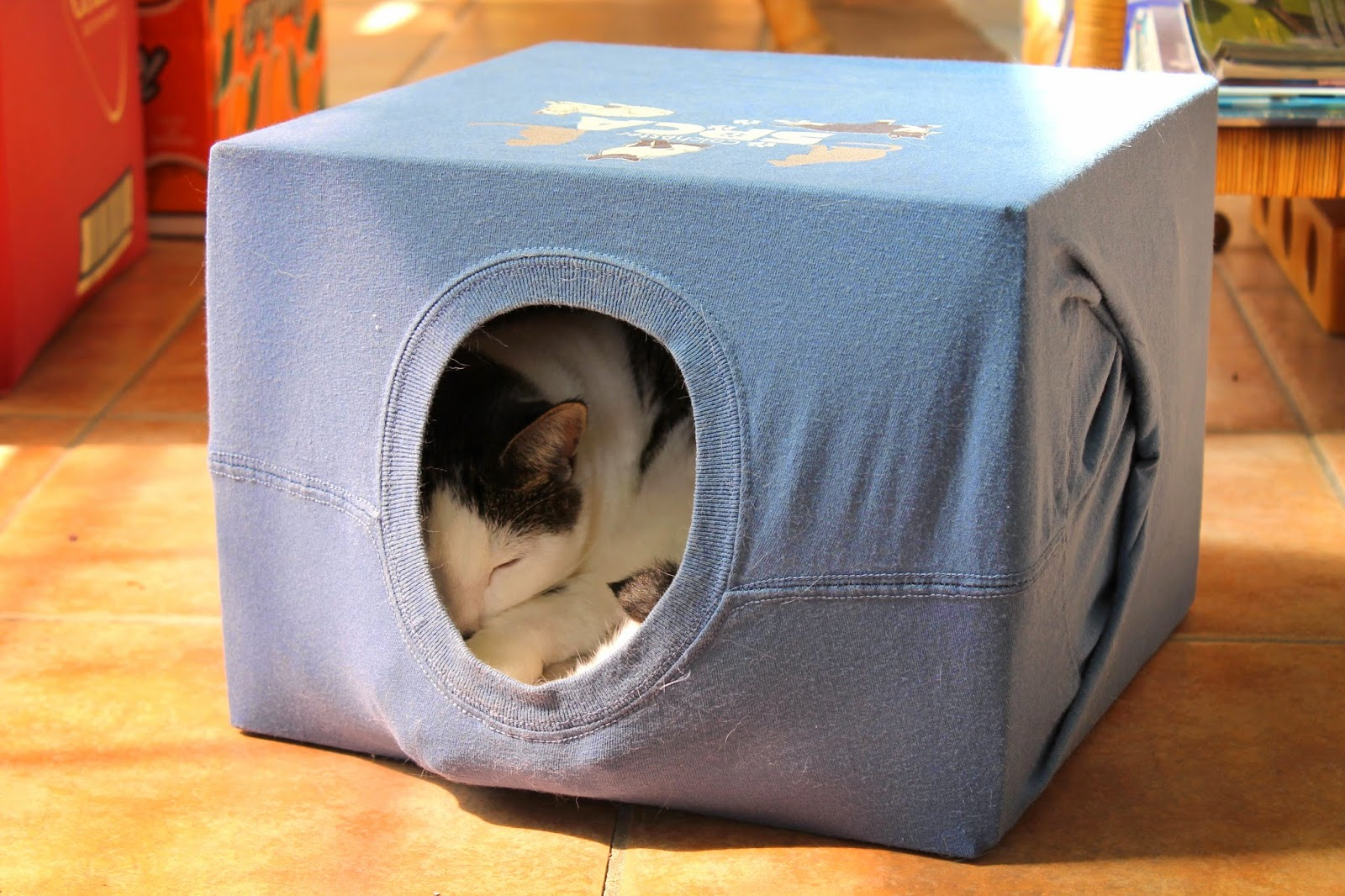First You Re Going To Cut Off The Top Flaps Of Cardboard Box And Find A Blanket Or Cushion Fit In Bottom Make It Cozy