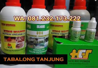 Jual SOC HCS, KINGMASTER, BIOPOWER Siap Kirim Tabalong Tanjung
