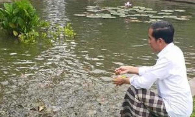 Jokowi Selami Filosofi Ikan, SBY Tenggelam dalam Filosofi Citra