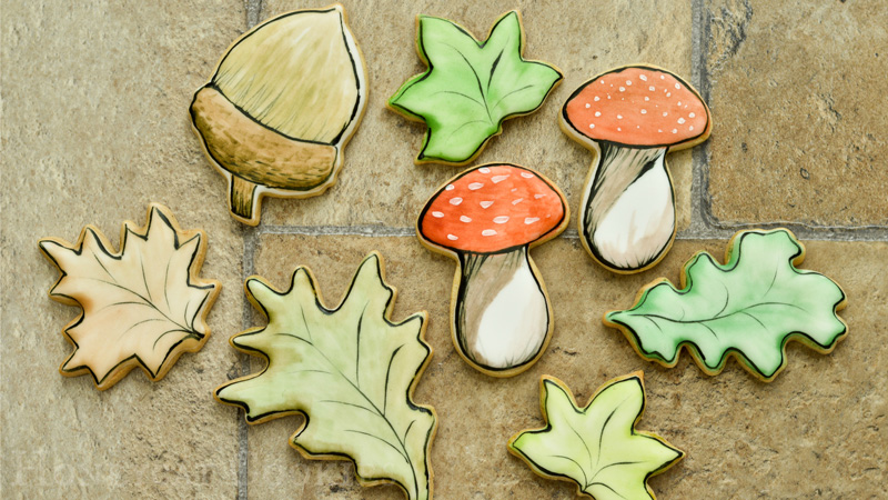 Set of matching handpainted woodland cookies to complement Gruffalo cookie set