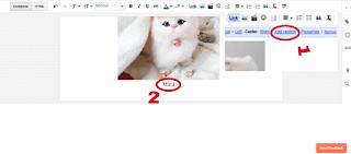 Adding caption on image