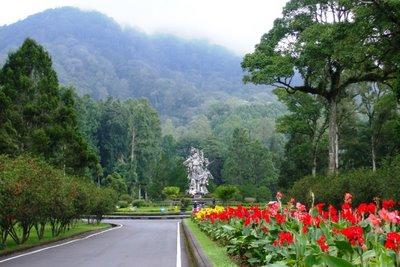 Bedugul Botanical Garden - Eka Karya Bali Botanical Garden