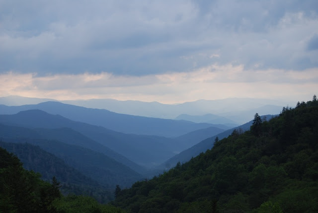 a Picture of The Great Smoky Mountains trail