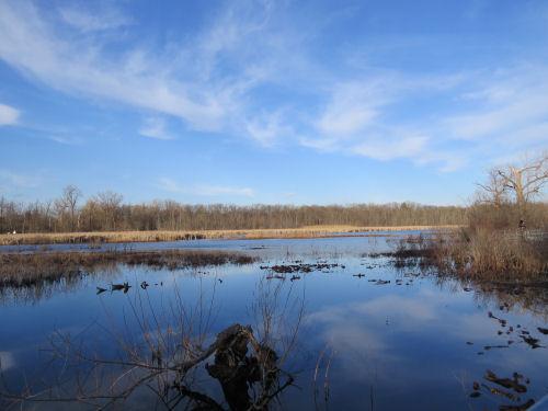 Reed's Lake