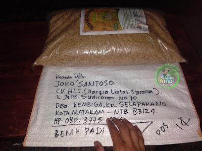 JOKO SANTOSO Mataram, NTB.  (Sebelum Packing)