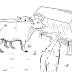 Operasi Dehorning pada Hewan