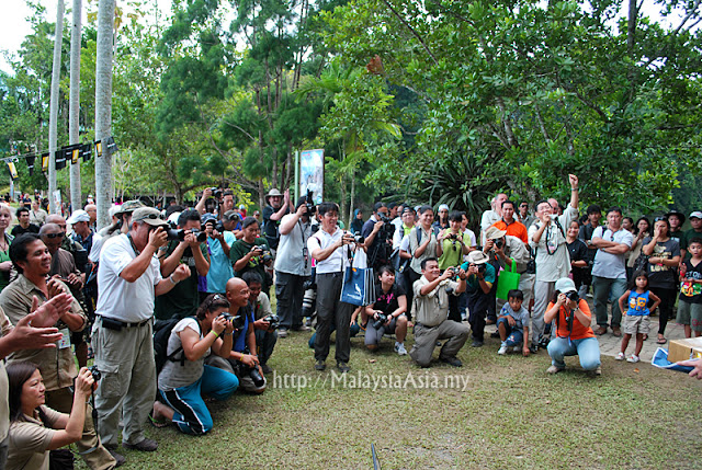 Event Borneo Bird Festival
