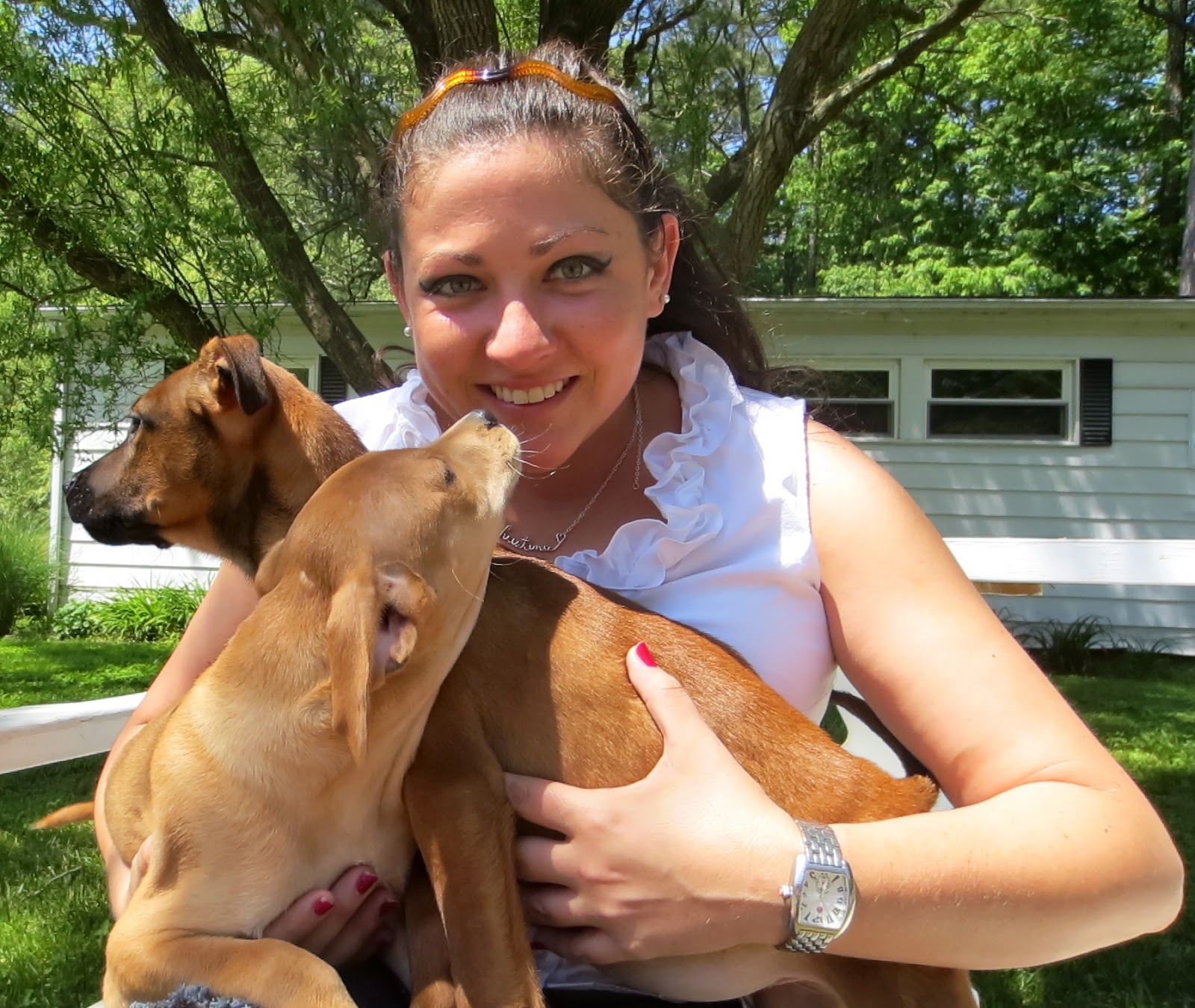 Salisbury News: Baywater Animal Rescue Hires Christina Kimerle As