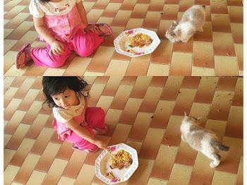 Salsabeela Si Pencinta Kucing