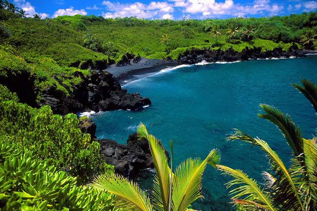 Tropical Vacations in maui