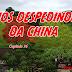 Capítulo 26 - Nos Despedindo da China