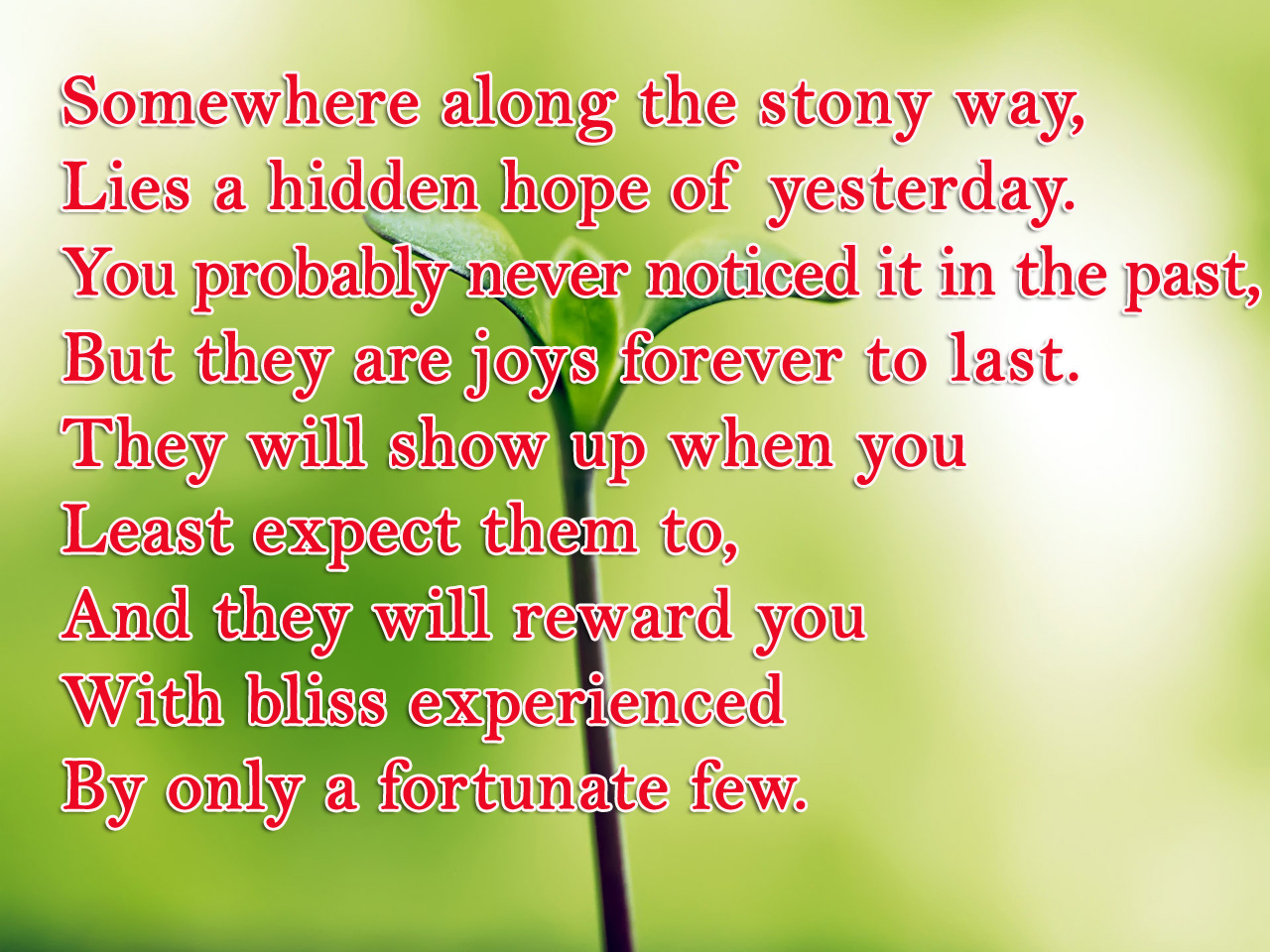 Best Hope Poems With Leaf Wallpapers - Poetry Likers