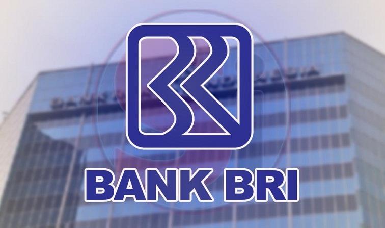 Mengenal BRILink, Program Keagenan dari Bank BRI
