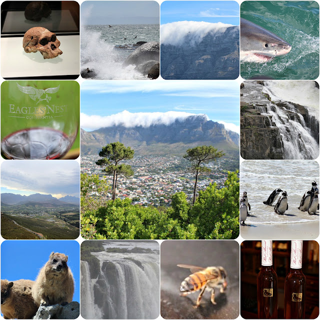 South Africa tour on Wine Dine And Play from waterfalls to great white sharks