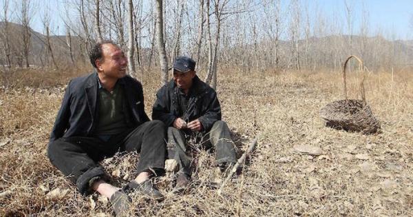 obr8 - Jak slepý s bezrukým společně zasadili les